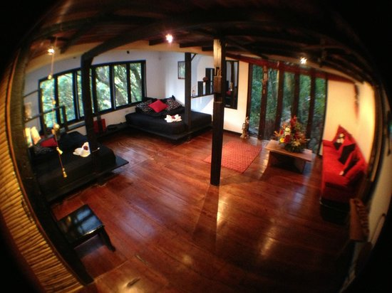 TreeTop House :                   The best room!