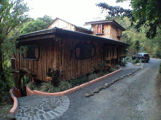 TreeTop House:                   Beautiful house!