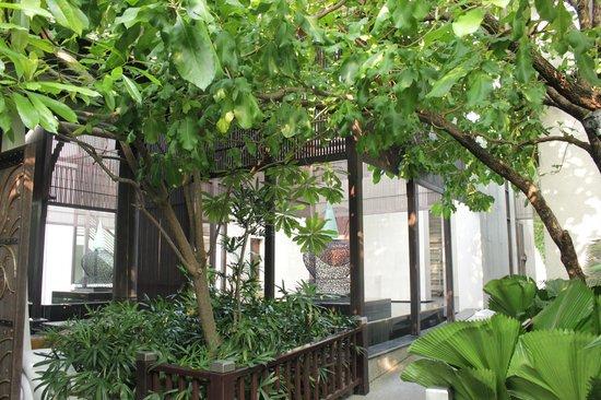 Sareeraya Villas & Suites:                   The walk way