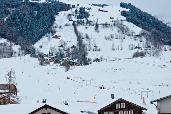 Hotel Hahnenblick:                   Ski area across the street
