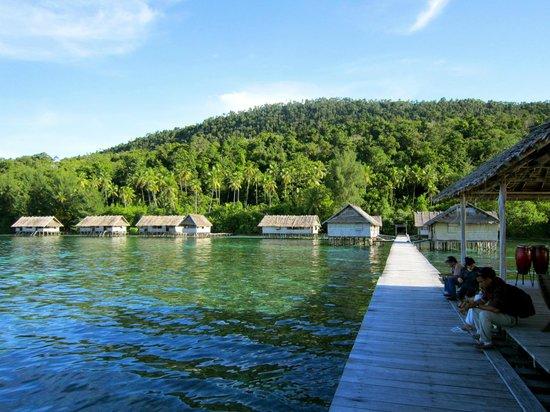 Kri eco resort picture of papua diving raja ampat tripadvisor - Raja ampat dive resort reviews ...