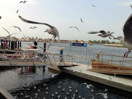 Bayt Al Wakeel :                                     View on the pier and the creek