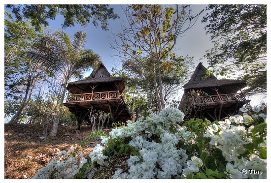 Nosy-Be Lodge : Nosy Be Lodge - Les Bungalows