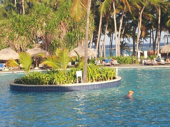 Club Med Punta Cana:                                     la piscine