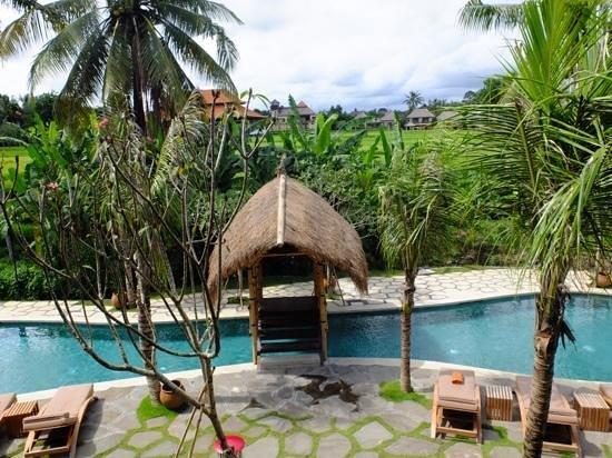 Alaya Resort Ubud:                   view from room balcony second floor