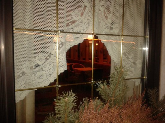 Hotel Allo Zodiaco:                   vista interno