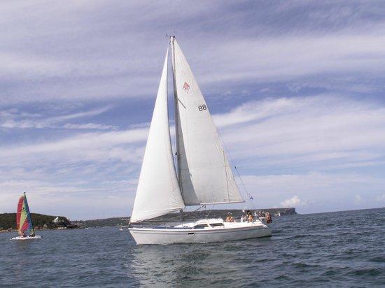 写真Champagne Sailing Sydney枚