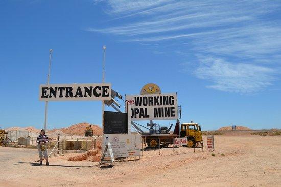 Tom's Working Opal Mine :                   Entrance