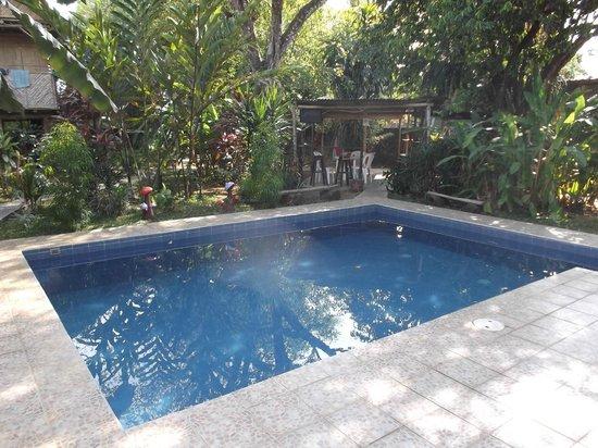 Bambu Hostel: Espace piscine en février 2013.