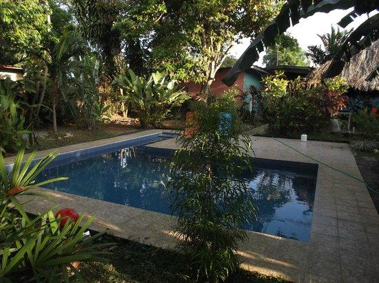 Bambu Hostel : Espace piscine en février 2013.