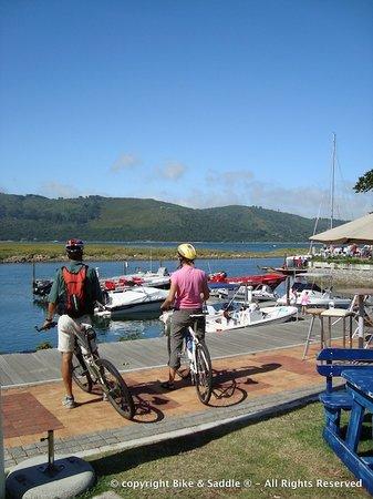 knysna village cycle with bike and saddle
