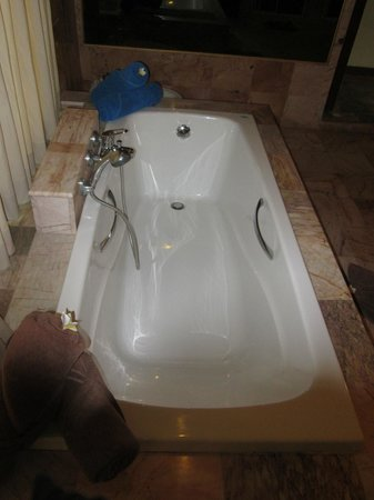 Viva Vacation Resort:                                     Our Huge Bathtub