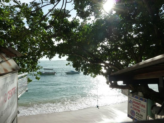 Unawatuna Diving Centre:                                     View from the balcony