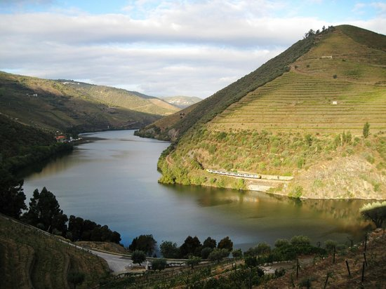 Quinta do Pego:                   View in the morning
