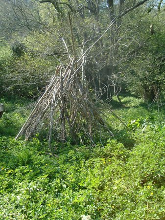 Watermill Cottages: making a den in the woods