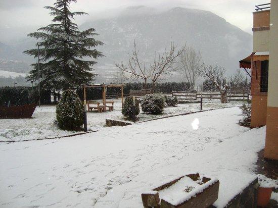 Hotel Dom: El nostre jardí nevat Gener 2012