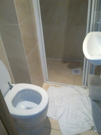 Studios2Let Serviced Apartments - Cartwright Gardens:                   Good shower, not enough room!
