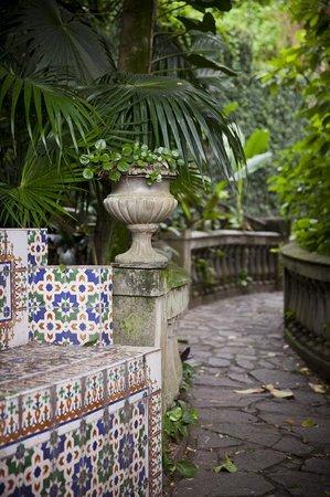 Casa Beleza: Garden path