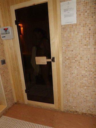 Apollonion Resort & Spa:                                     sauna