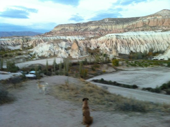 Goreme Ranch:                   Puppy dog must come along