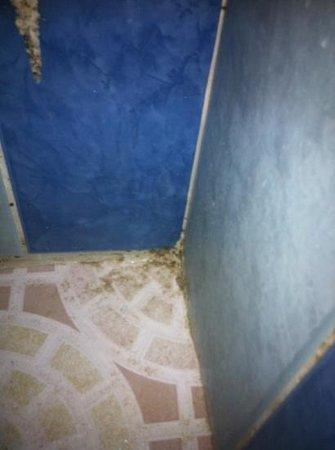 Hostel Heike :                   filthy bathroom floor