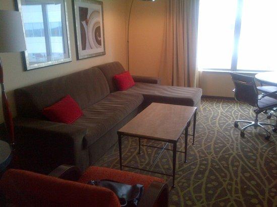 Embassy Suites by Hilton Houston - Energy Corridor:                   Living Room