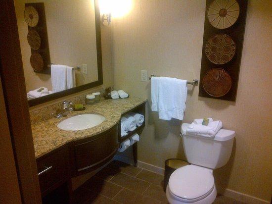 Embassy Suites by Hilton Houston - Energy Corridor:                   Bathroom