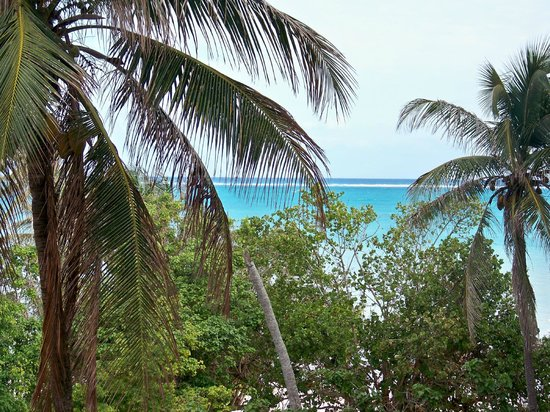 Breezes Resort & Spa Bahamas:                   View from non ocean view room, you have to lean out to see this but it's not a