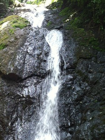 Ocean Ranch Park:                   Waterfall to rappel