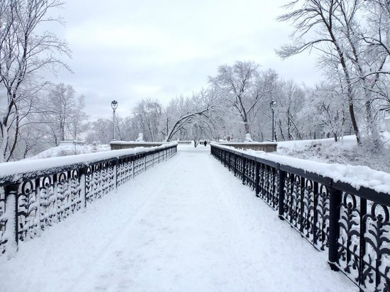 Lake Park:                                     wintry bridge