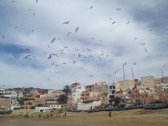 Taghazout Beach: la plage