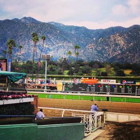 Santa Anita Race Park:                   The track