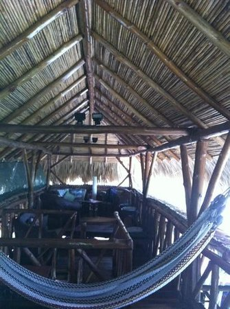 Conchal Hotel:                   upper level of treehouse