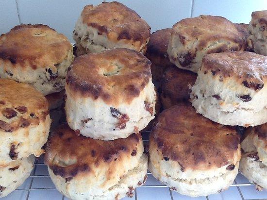 Gardeners Restaurant: Homemade scones fresh out of the oven.