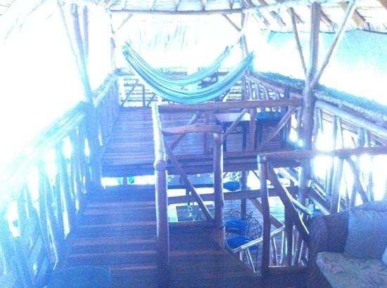 Conchal Hotel:                   upper level treehouse