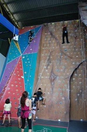 Sabah Indoor Climbing Centre:                   climbing