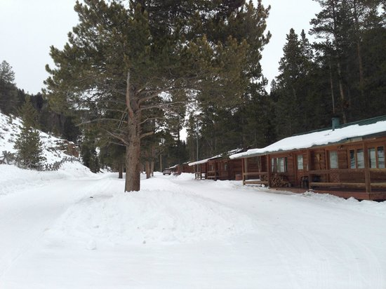 320 Guest Ranch:                   row of cabin duplexes