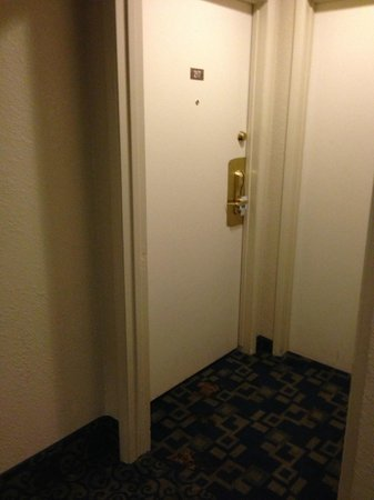 Rodeway Inn Casino Center :                                     Dog Crap right on my room's door