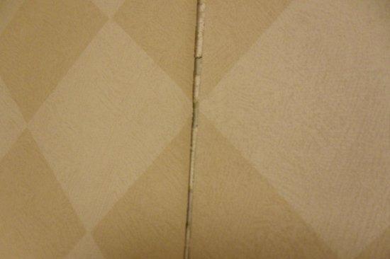 Sawgrass Inn & Conference Center:                   cracks in wallpaper