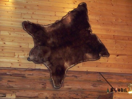 320 Guest Ranch:                                     Bear Rug