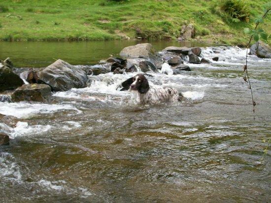 Doone Valley Campsite:                                     Having a dip