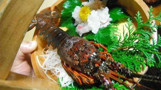 Nakatora :                   伊勢海老の活造り