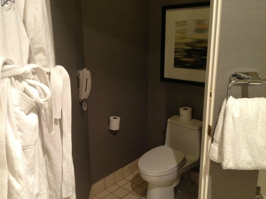 Fairmont Scottsdale Princess:                   private commode with door that closes--and phone just in case