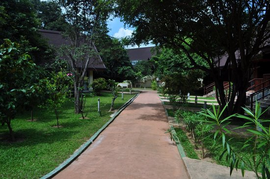 The Paradise Resort and Spa:                   walkway to our room
