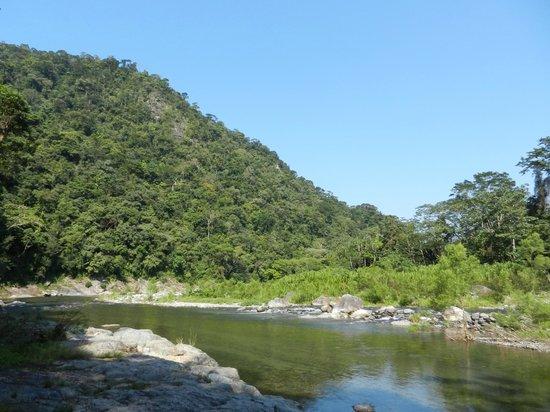 Omega Tours Eco Jungle Lodge:                                     River view