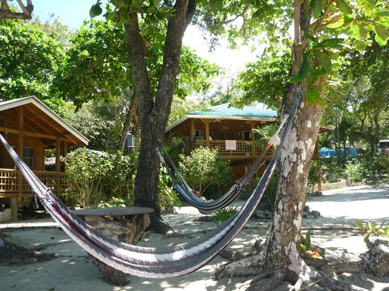 Bay Islands Underwater Museum:                   Lazy hammocks to relax after swimming!