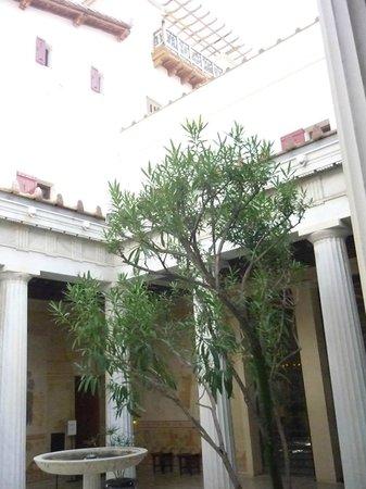 Villa Grecque Kérylos :                   le temps et l olivier