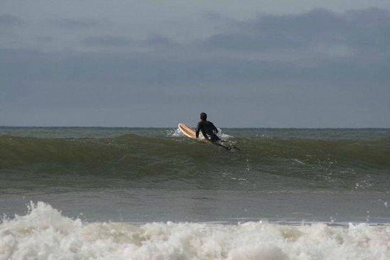 Progress Surf Academy & Swansea Surf School:                   surf! Gennith