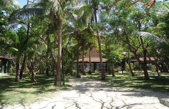 Treasure Island Resort:                   Treasure Isand