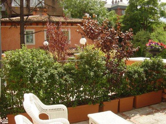 Hotel Quinta De Los Cedros: Jardines